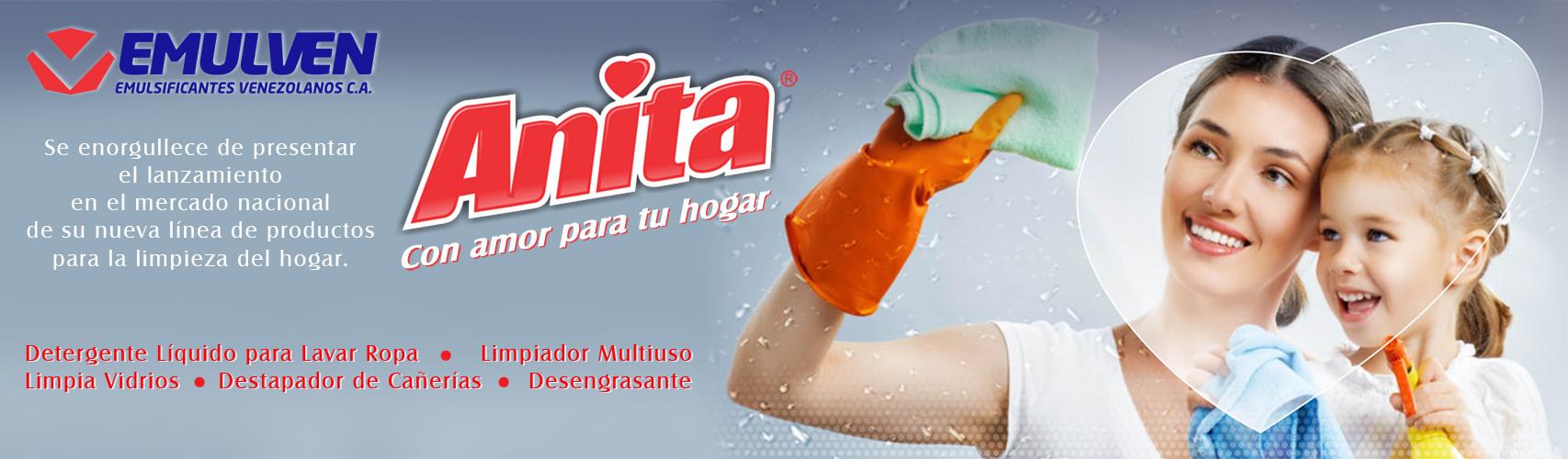 Banner Anita
